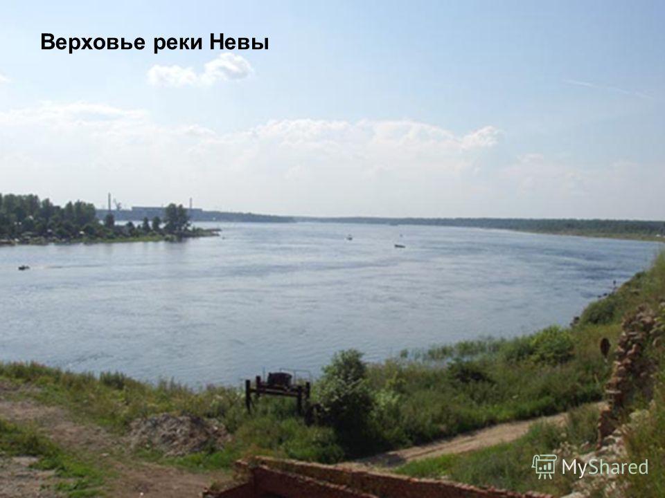 Верховье реки Невы