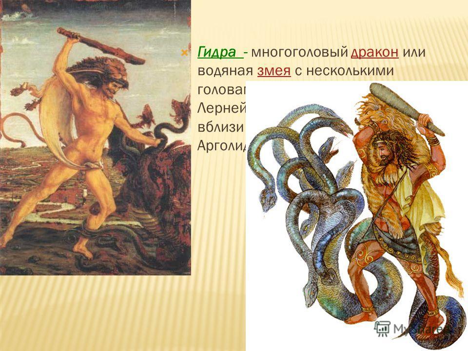 Гидра - многоголовый дракон или водяная змея с несколькими головами. Больше всех известна Лернейская гидра, жившая в болотах вблизи города Лерна на берегу Арголидского залива.драконзмея