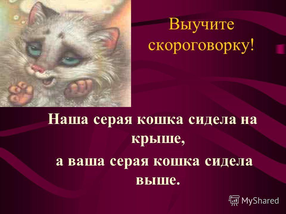 Выучите скороговорку! Наша серая кошка сидела на крыше, а ваша серая кошка сидела выше.