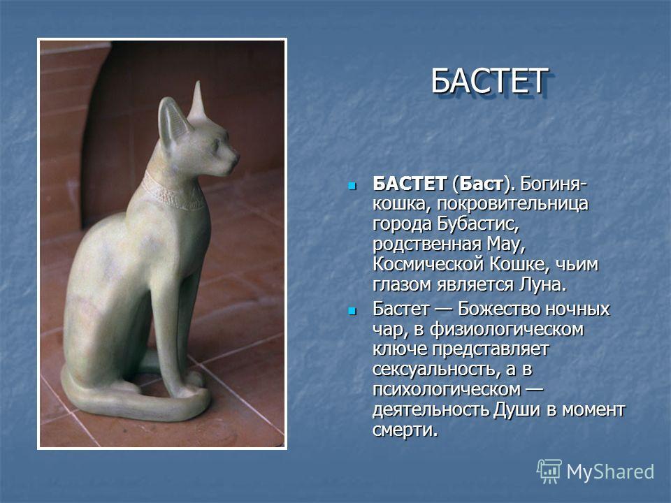 БАСТЕТБАСТЕТ БАСТЕТ (Баст). Богиня- кошка, покровительница города Бубастис, родственная May, Космической Кошке, чьим глазом является Луна. БАСТЕТ (Баст). Богиня- кошка, покровительница города Бубастис, родственная May, Космической Кошке, чьим глазом