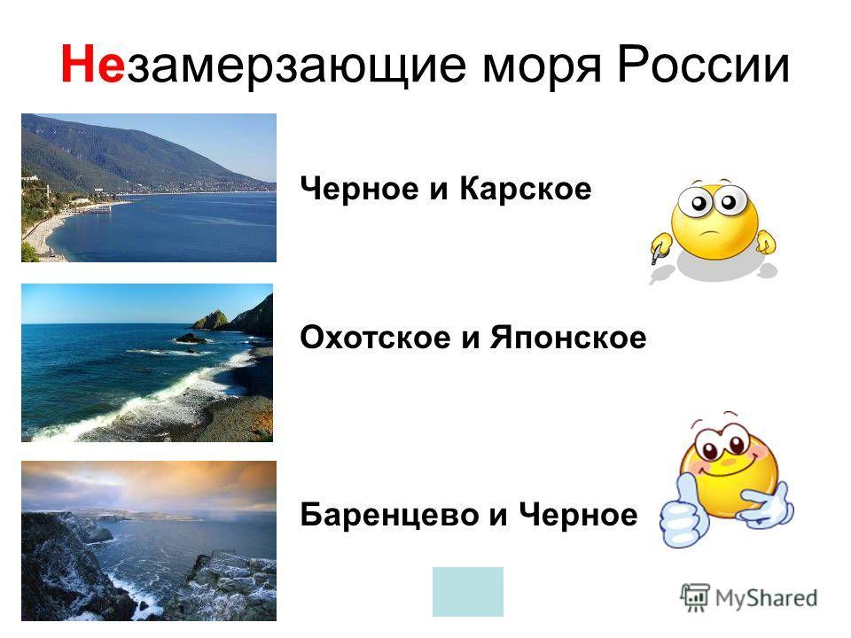 С какими странами Россия не имеет морских границ? Армения Япония США