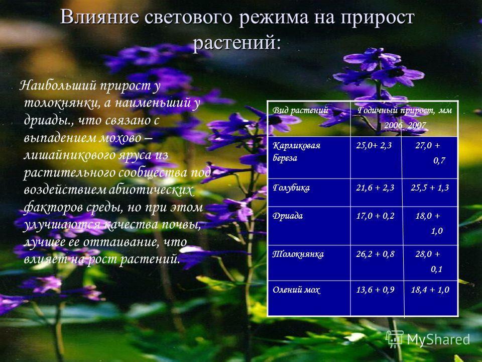 Влияние светового режима на прирост растений: Наибольший прирост у толокнянки, а наименьший у дриады., что связано с выпадением мохово – лишайникового яруса из растительного сообщества под воздействием абиотических факторов среды, но при этом улучшаю