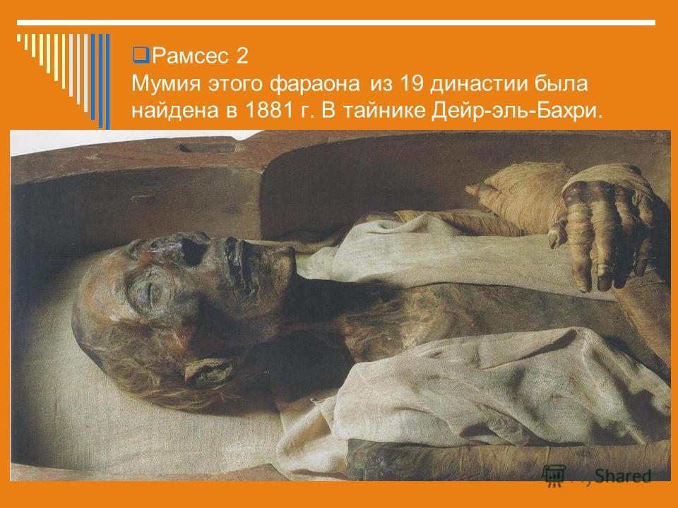 Рамсес 2 Мумия этого фараона из 19 династии была найдена в 1881 г. В тайнике Дейр-эль-Бахри.