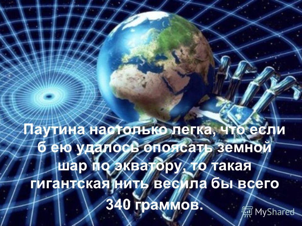 Паутина настолько легка, что если б ею удалось опоясать земной шар по экватору, то такая гигантская нить весила бы всего 340 граммов.