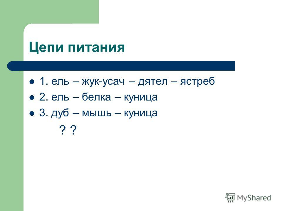 Цепи питания 1. ель – жук-усач – дятел – ястреб 2. ель – белка – куница 3. дуб – мышь – куница ? ?