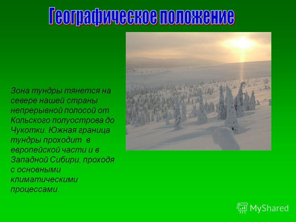 Зона тундры тянется на севере нашей страны непрерывной полосой от Кольского полуострова до Чукотки. Южная граница тундры проходит в европейской части и в Западной Сибири, проходя с основными климатическими процессами.