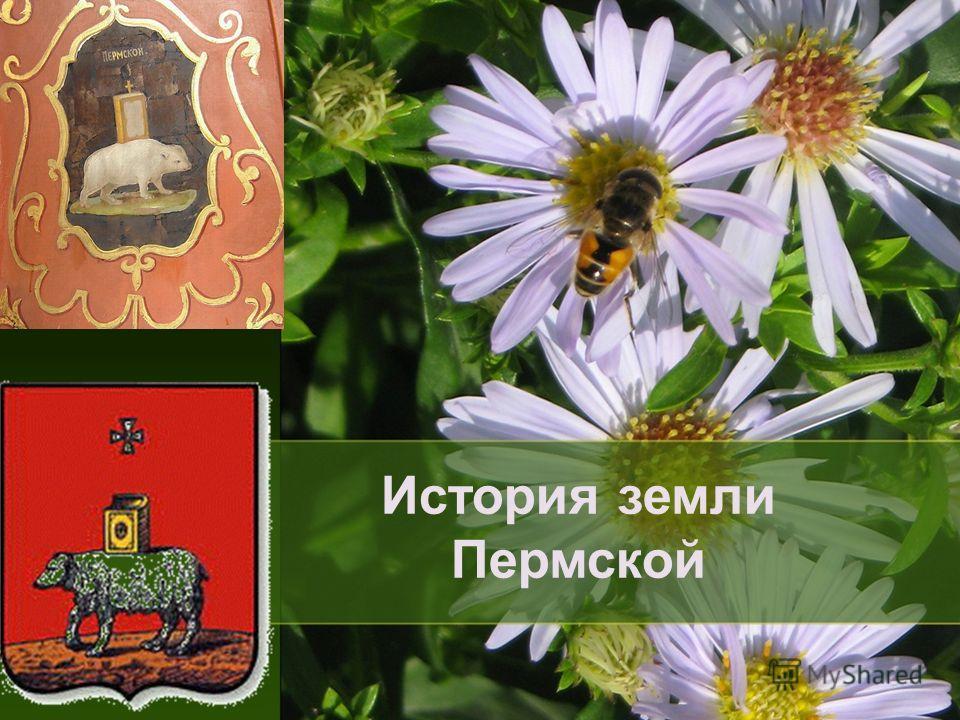 История земли Пермской
