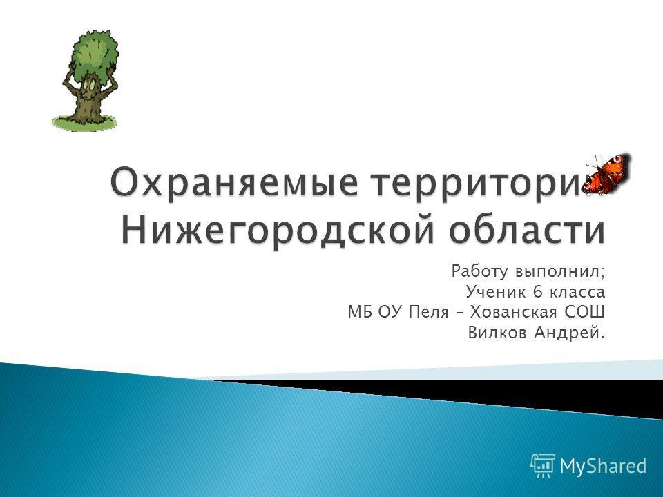 Работу выполнил; Ученик 6 класса МБ ОУ Пеля – Хованская СОШ Вилков Андрей.