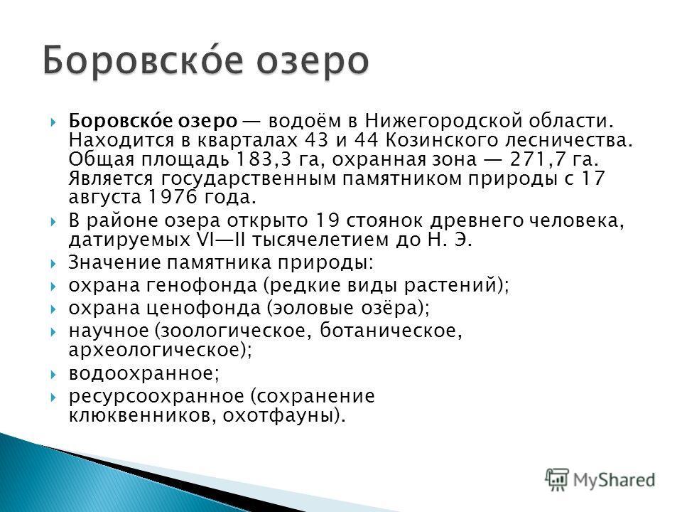 Боровско́е озеро водоём в Нижегородской области. Находится в кварталах 43 и 44 Козинского лесничества. Общая площадь 183,3 га, охранная зона 271,7 га. Является государственным памятником природы с 17 августа 1976 года. В районе озера открыто 19 стоян