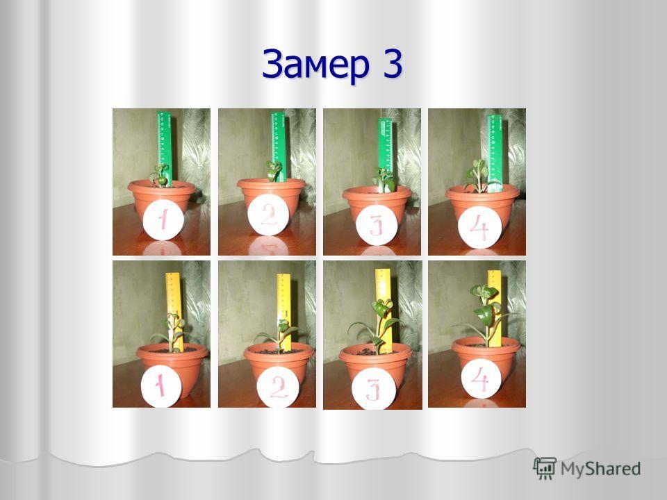 Замер 3