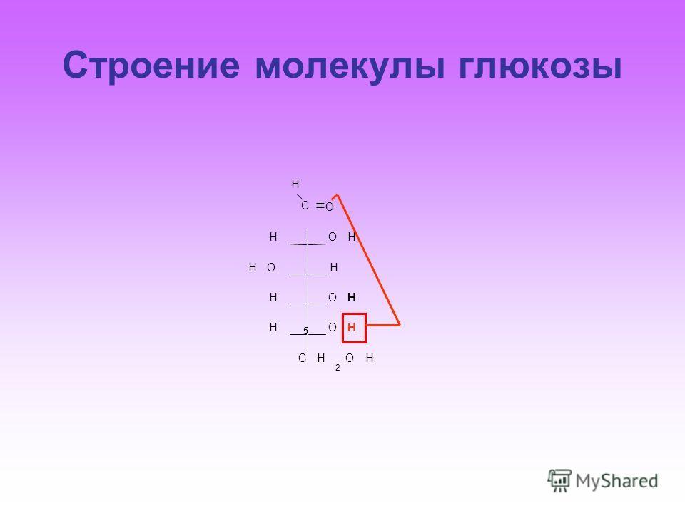 Строение молекулы глюкозы C H O OHH HHO OHH OHH CH 2 OH = 5