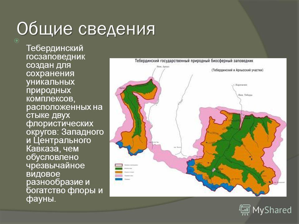 Общие сведения Тебердинский госзаповедник создан для сохранения уникальных природных комплексов, расположенных на стыке двух флористических округов: Западного и Центрального Кавказа, чем обусловлено чрезвычайное видовое разнообразие и богатство флоры