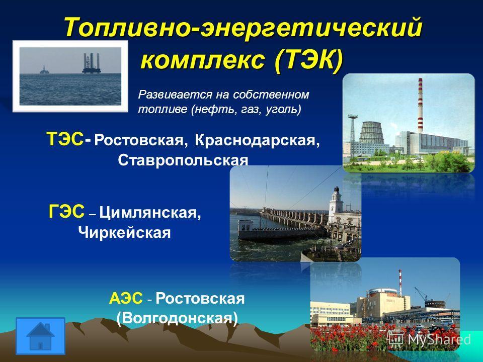 Топливно энергетический комплекс тэк