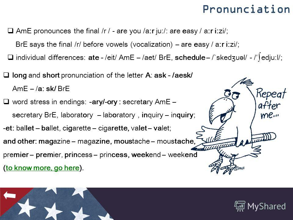 AmE pronounces the final /r / - are you /a:r ju:/: are easy / a:r i:zi/; BrE says the final /r/ before vowels (vocalization) – are easy / a:r i:zi/; individual differences: ate - /eit/ AmE – /aet/ BrE, schedule – /`sked ʒ uәl/ - /edju:l/; long and sh