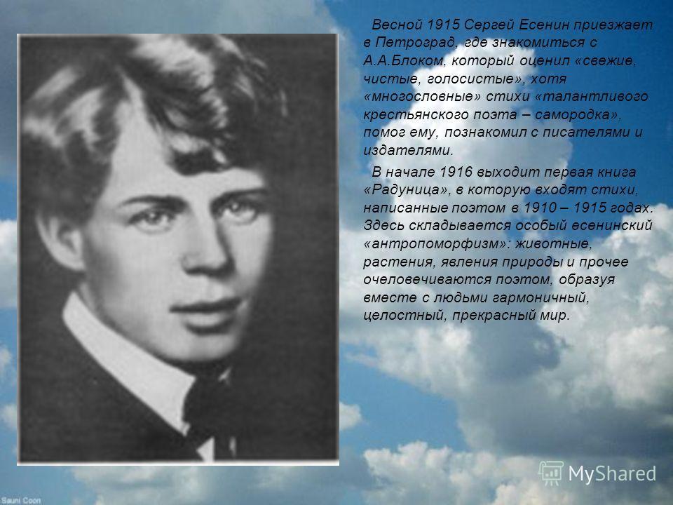 Весной 1915 Сергей Есенин приезжает в Петроград, где знакомиться с А.А.Блоком, который оценил «свежие, чистые, голосистые», хотя «многословные» стихи «талантливого крестьянского поэта – самородка», помог ему, познакомил с писателями и издателями. В н