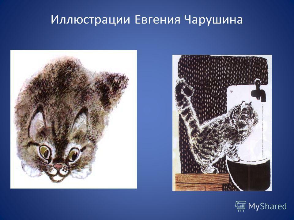 Чарушин Е. попробовал писать небольшие рассказы для детей о жизни животных. Очень тепло о рассказах начинающего автора отозвался Максим Горький. Но это оказалось самым трудным делом в его жизни, так как по его собственному признанию, иллюстрировать ч