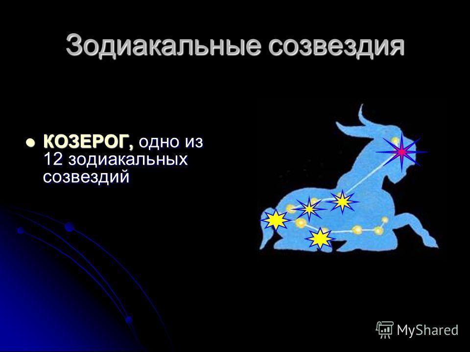 Зодиакальные созвездия КОЗЕРОГ, одно из 12 зодиакальных созвездий КОЗЕРОГ, одно из 12 зодиакальных созвездий