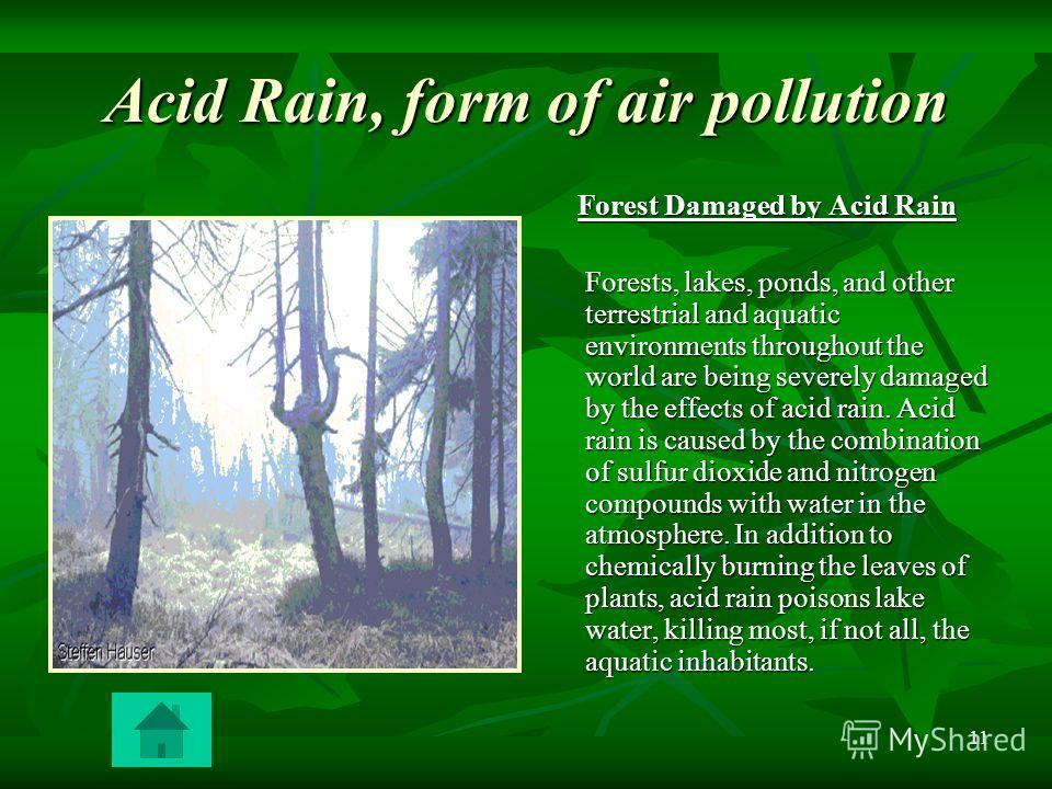 one world essay on acid rain 11 acid rain: acid rain occurs due to the presence of certain pollutants in the atmosphere acid rain can be caused due to combustion of fossil fuels or erupting volcanoes or rotting vegetation which release sulfur dioxide and nitrogen oxides into the atmosphere.