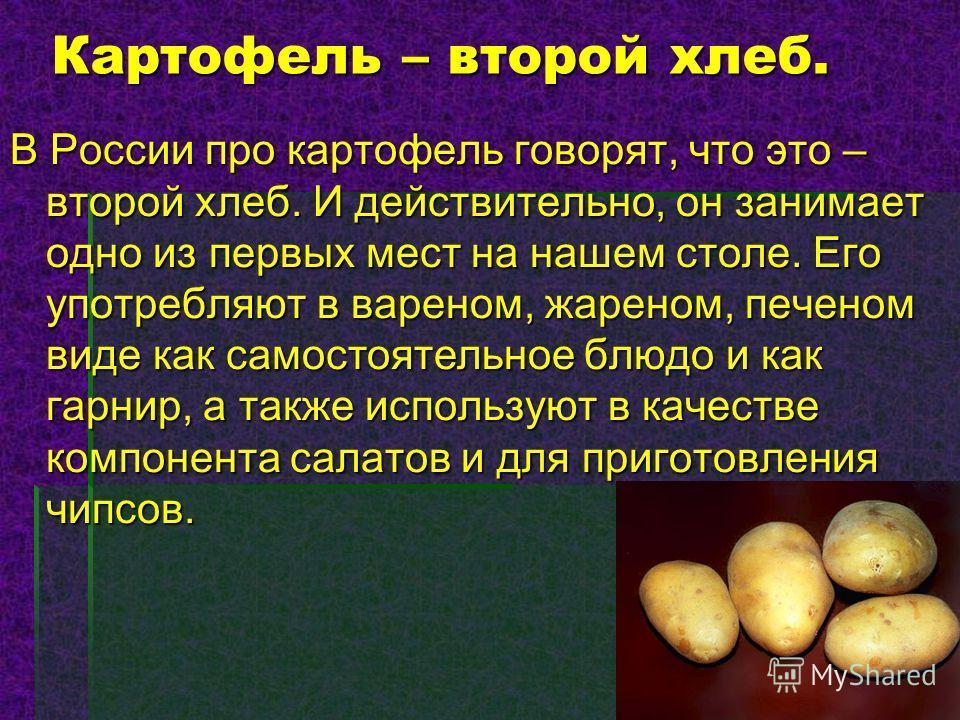 Картофель – второй хлеб. В России про картофель говорят, что это – второй хлеб. И действительно, он занимает одно из первых мест на нашем столе. Его употребляют в вареном, жареном, печеном виде как самостоятельное блюдо и как гарнир, а также использу