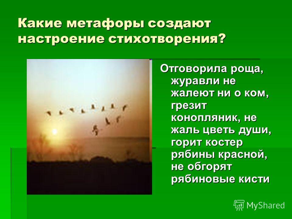 Какие метафоры создают настроение стихотворения? Отговорила роща, журавли не жалеют ни о ком, грезит конопляник, не жаль цветь души, горит костер рябины красной, не обгорят рябиновые кисти