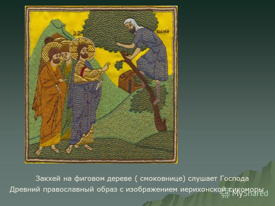 Закхей на фиговом дереве ( смоковнице) слушает Господа Древний православный образ с изображением иерихонской сикоморы