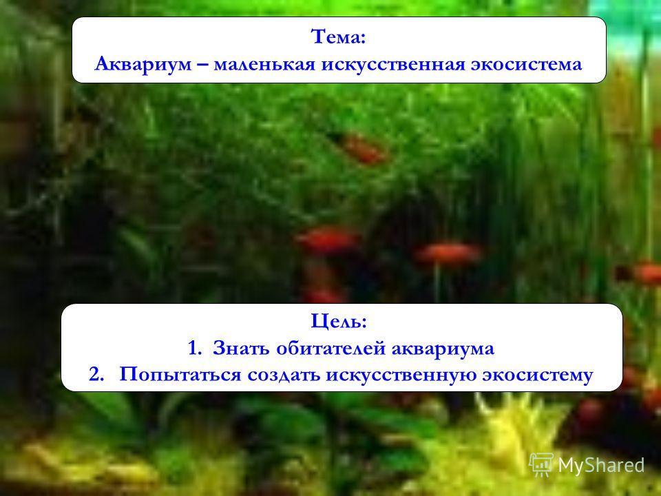 Тема: Аквариум – маленькая искусственная экосистема Цель: 1.Знать обитателей аквариума 2. Попытаться создать искусственную экосистему