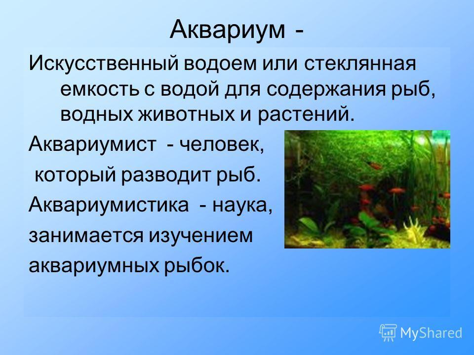 Аквариум - Искусственный водоем или стеклянная емкость с водой для содержания рыб, водных животных и растений. Аквариумист - человек, который разводит рыб. Аквариумистика - наука, занимается изучением аквариумных рыбок.