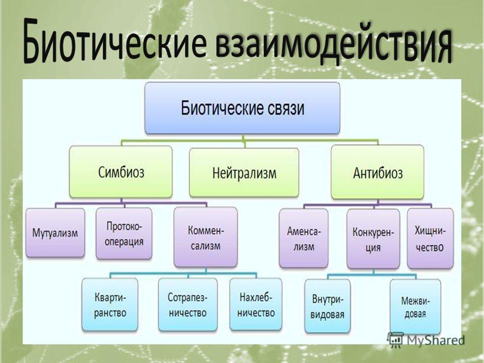 Нейтраль- ные Взаимопо- лезные Полезно- нейтральные Полезно- вредные Взаимо- вредные Вредно- нейтраль- ные 0 + + 0+ -- - 0 Нейтра- лизм Протоко- операция КоменсализмПарази- тизм Конкурен- ция Аменса- лизм СимбиозХищни- чество Мутуализм Нахлебни- чест