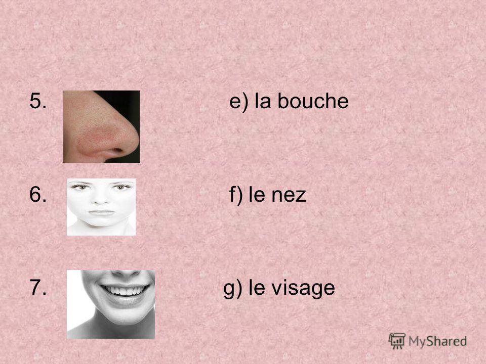 5. e) la bouche 6. f) le nez 7. g) le visage