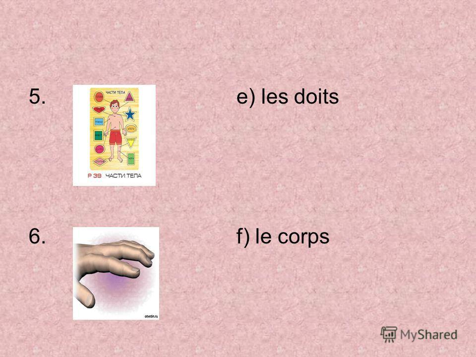 5. e) les doits 6. f) le corps