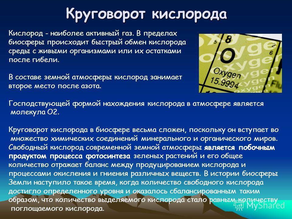 Круговорот кислорода Кислород - наиболее активный газ. В пределах биосферы происходит быстрый обмен кислорода среды с живыми организмами или их остатками после гибели. В составе земной атмосферы кислород занимает второе место после азота. Господствую