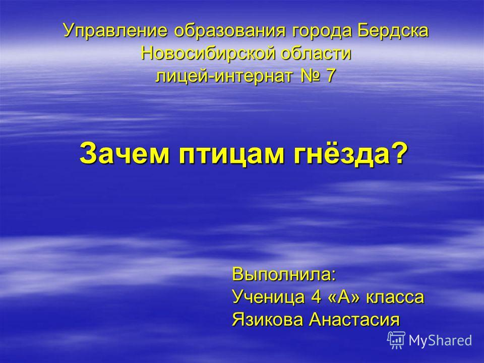 Управление образования города Бердска Новосибирской области лицей-интернат 7 Зачем птицам гнёзда? Выполнила: Ученица 4 «А» класса Язикова Анастасия