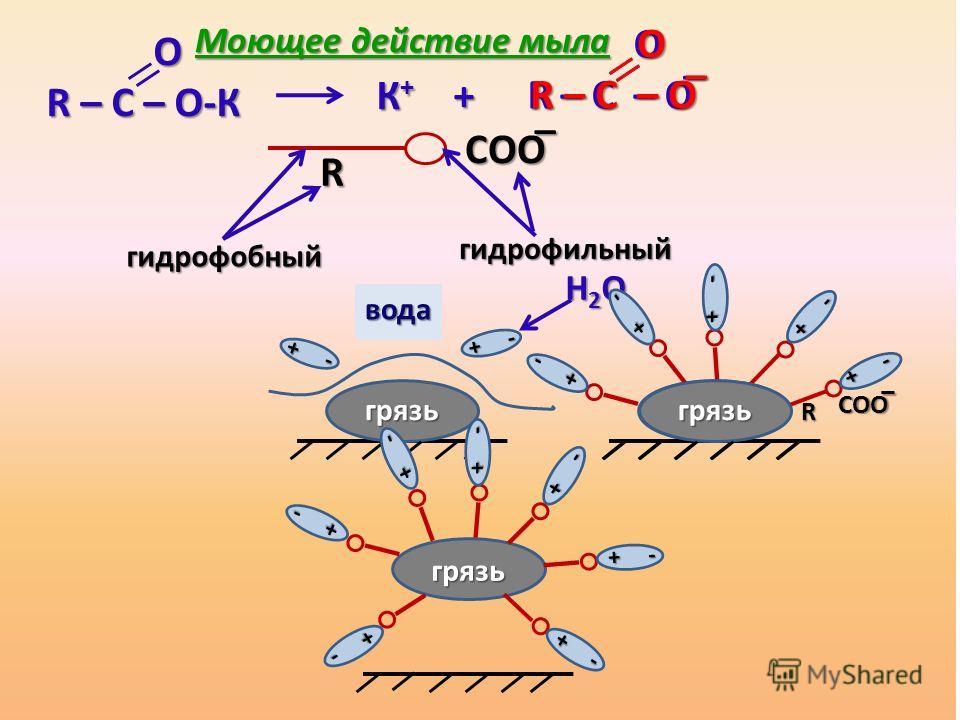 К + + О R – С – О ̅ R – С – О ̅ О R – С – О-К R – С – О-К R СОО ̅ гидрофобный гидрофобный гидрофильный гидрофильный грязь + - + - вода Н2ОН2ОН2ОН2О грязь грязь R СОО ̅ грязь + - + - О R – С – О ̅ R – С – О ̅ Моющее действие мыла