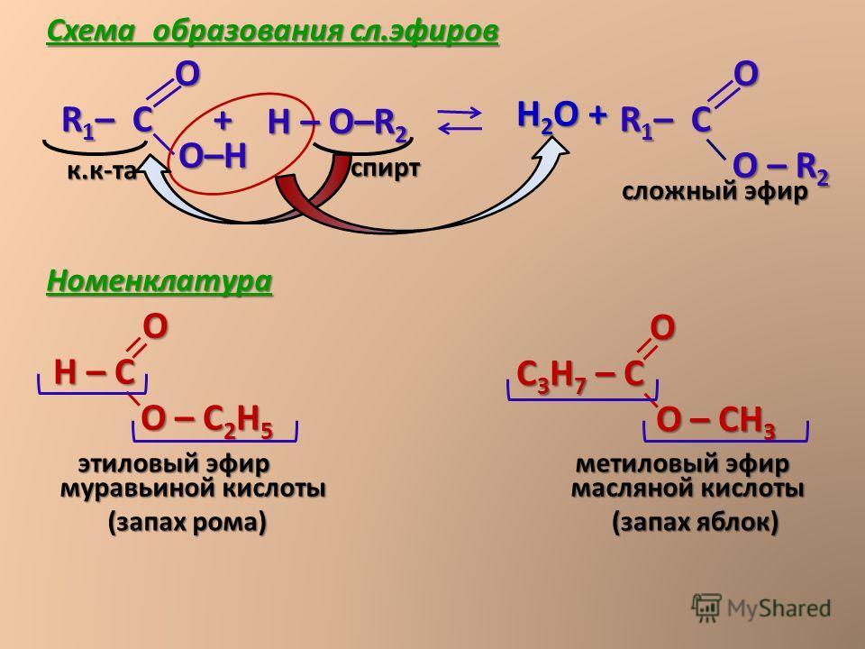 Н 2 О + О R 1 – С R 1 – С О – R 2 О – R 2 сложный эфир О Н – С О – С 2 Н 5 О – С 2 Н 5 этиловый эфир (запах рома) О С 3 Н 7 – С О – СН 3 О – СН 3 метиловый эфир (запах яблок) муравьиной кислоты масляной кислоты О R 1 – С + R 1 – С + О–Н О–Н Н спирт –