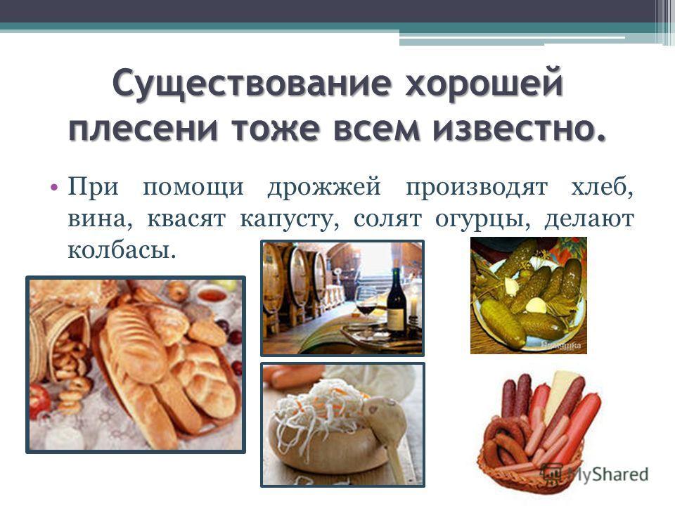 Существование хорошей плесени тоже всем известно. При помощи дрожжей производят хлеб, вина, квасят капусту, солят огурцы, делают колбасы.