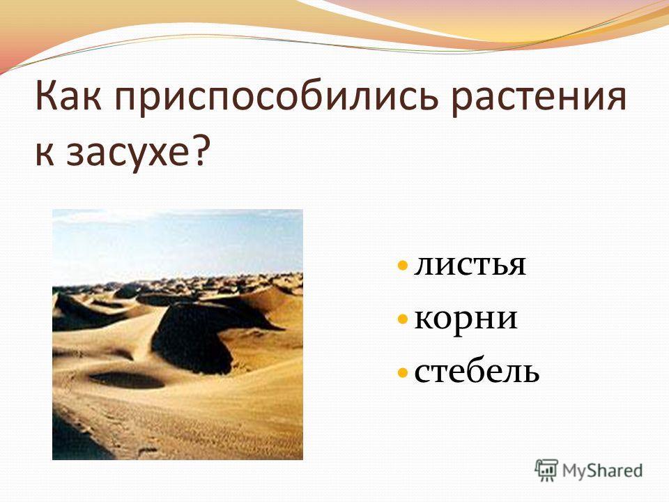 Учебник дмитриева казаков 4 класс скачать бесплатно без регистрации