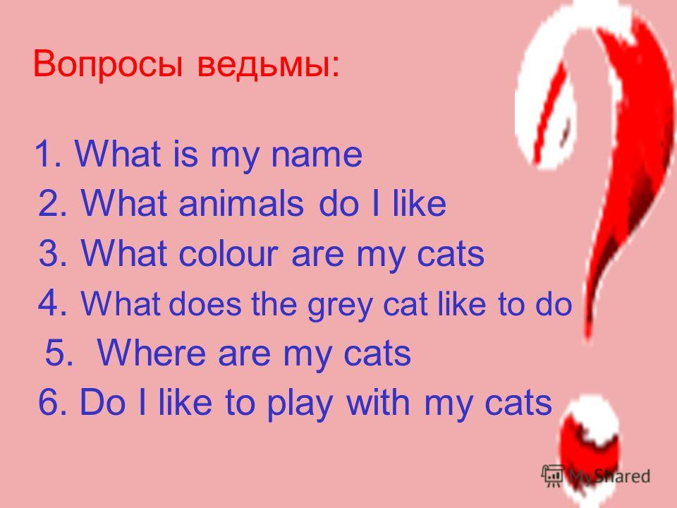 My name is Baba Yaga. Im from Russia. I like cats. I have got three black cats, two brown cats and one grey cat. I dont like dogs. Dogs dont like cats. I play with my cats. They like to run and jump. My grey cat likes to sleep. It is on the chair. My