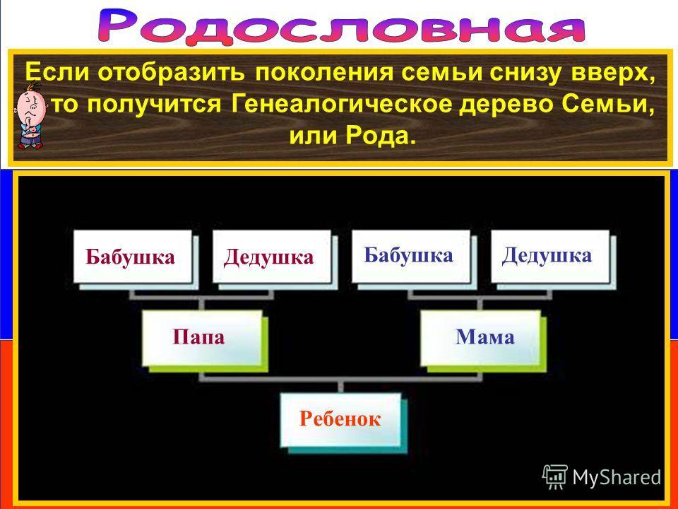 Если отобразить поколения семьи снизу вверх, то получится Генеалогическое дерево Семьи, или Рода. Ребенок ПапаМама БабушкаДедушка БабушкаДедушка