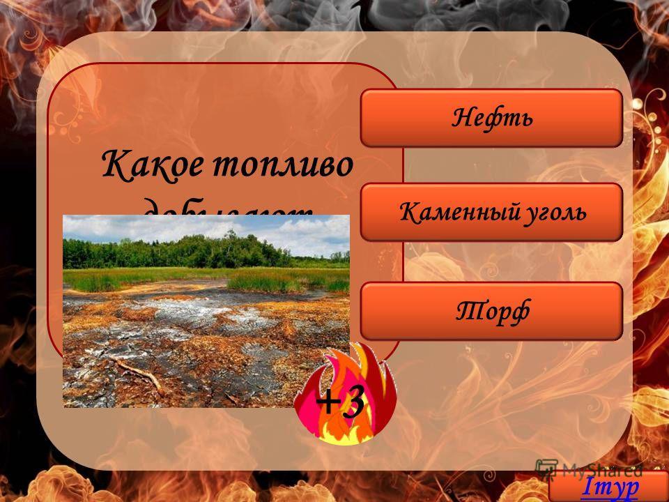 Какое топливо добывают на болоте? Торф Каменный уголь Нефть +3 Iтур