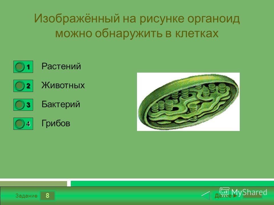 8 Задание Изображённый на рисунке органоид можно обнаружить в клетках Растений Животных Бактерий Грибов Далее 1 1 2 0 3 0 4 0
