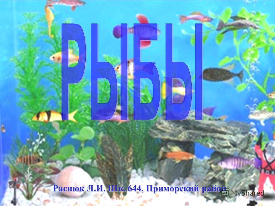 Раснюк Л.И. Шк. 644, Приморский район