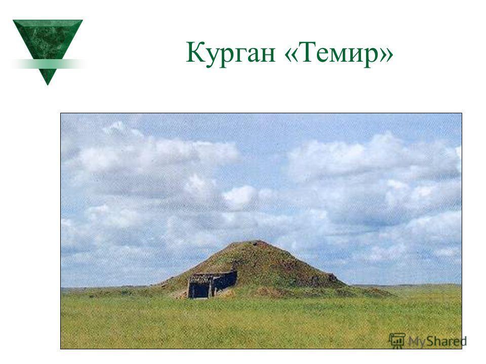 Курган «Темир»