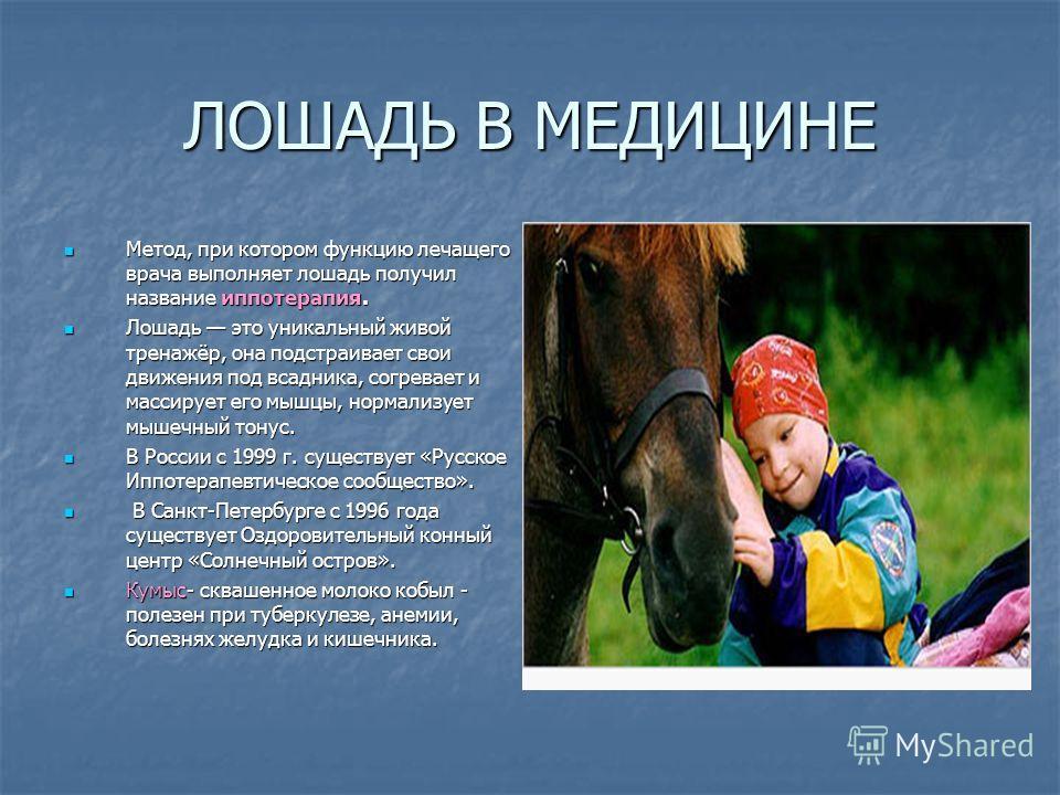 ЛОШАДЬ В МЕДИЦИНЕ Метод, при котором функцию лечащего врача выполняет лошадь получил название иппотерапия. Лошадь это уникальный живой тренажёр, она подстраивает свои движения под всадника, согревает и массирует его мышцы, нормализует мышечный тонус.