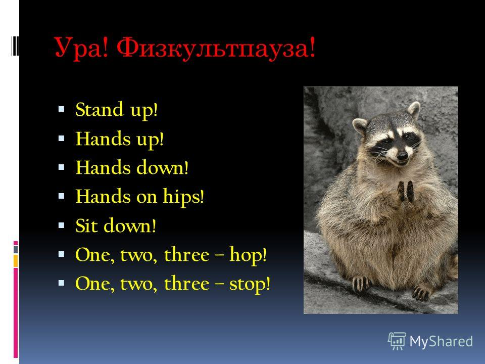 Ура! Физкультпауза! Stand up! Hands up! Hands down! Hands on hips! Sit down! One, two, three – hop! One, two, three – stop!