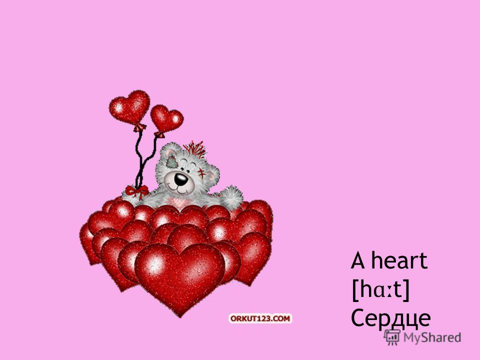 A heart [h ɑː t] Сердце