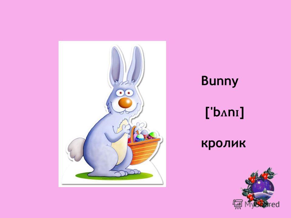 Bunny ['b ʌ n ɪ ] кролик