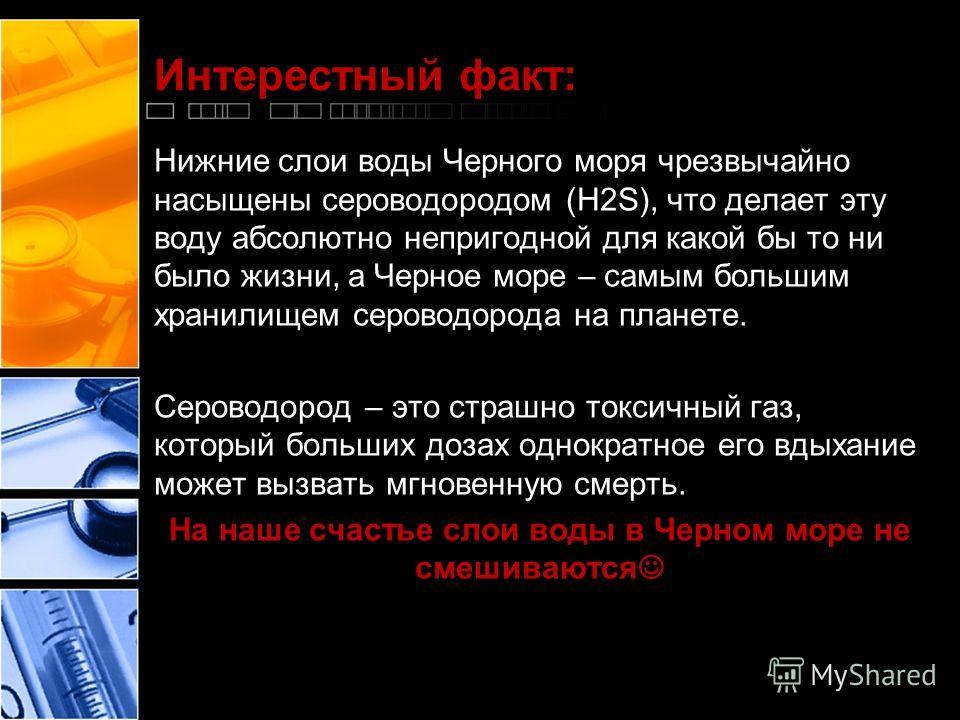 Интерестный факт: Нижние слои воды Черного моря чрезвычайно насыщены сероводородом (H2S), что делает эту воду абсолютно непригодной для какой бы то ни было жизни, а Черное море – самым большим хранилищем сероводорода на планете. Сероводород – это стр