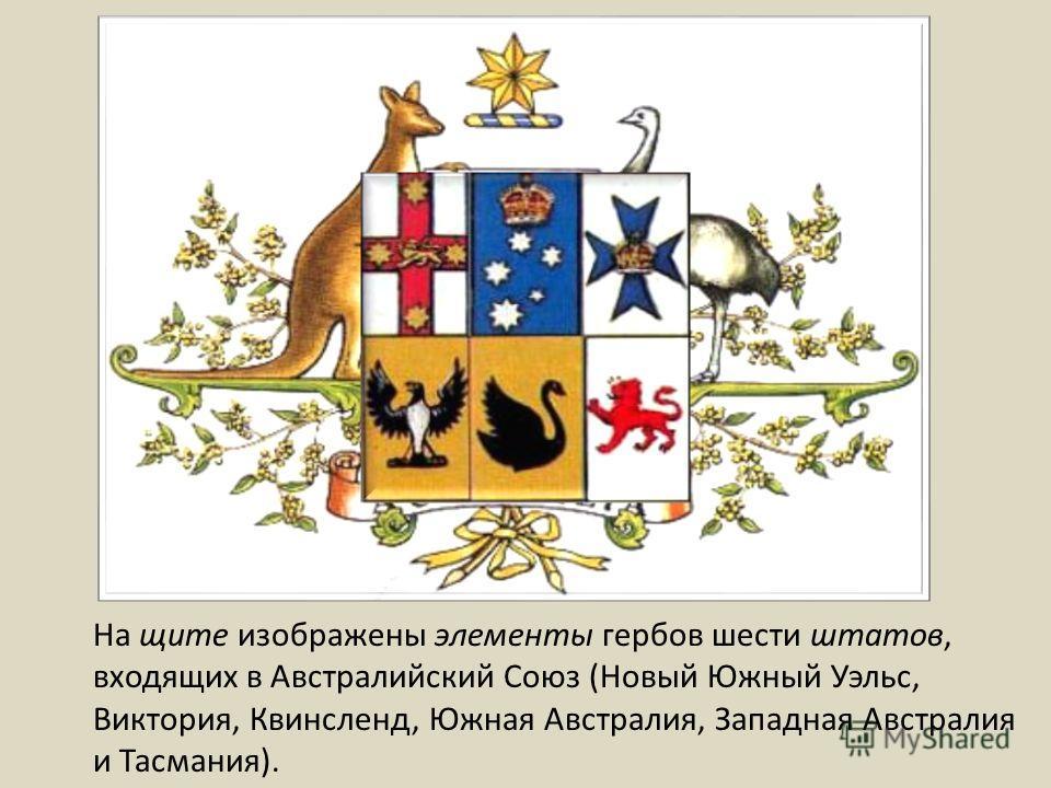 На щите изображены элементы гербов шести штатов, входящих в Австралийский Союз (Новый Южный Уэльс, Виктория, Квинсленд, Южная Австралия, Западная Австралия и Тасмания).
