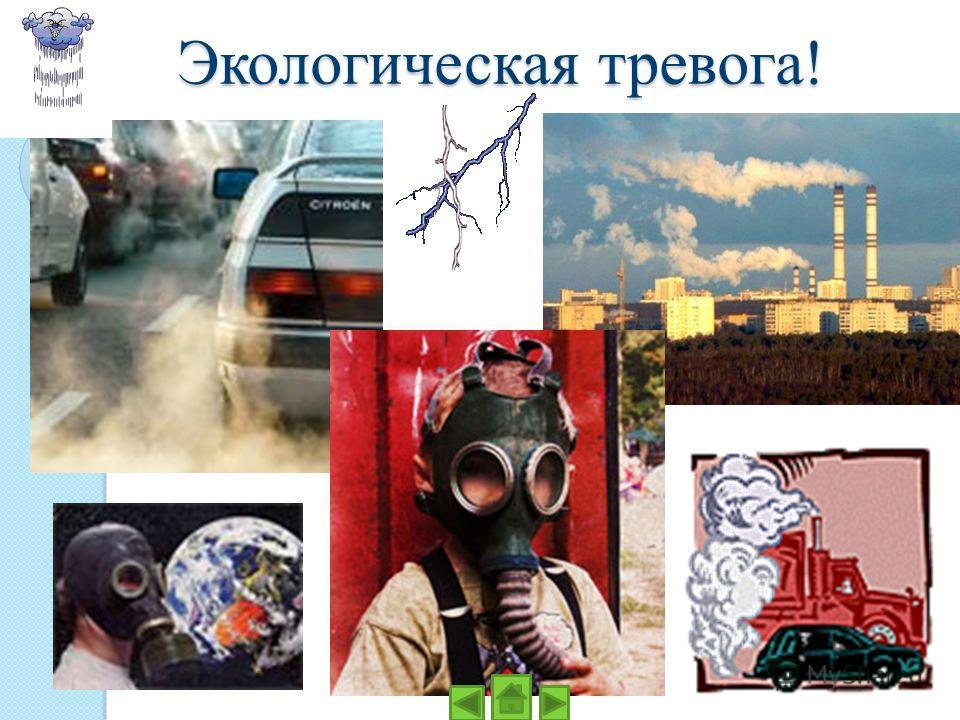 Экологическая тревога!