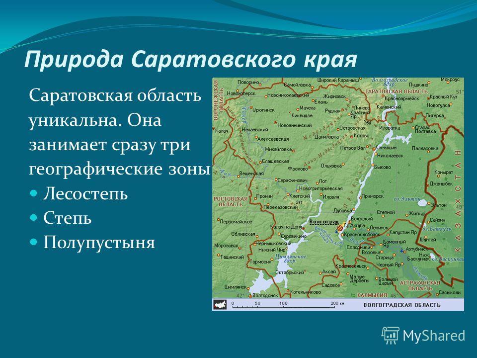 Природа Саратовского края Саратовская область уникальна. Она занимает сразу три географические зоны: Лесостепь Степь Полупустыня
